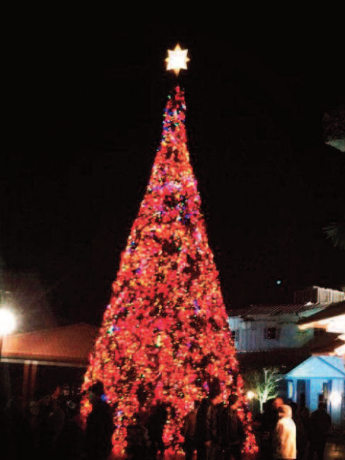 Grand Strand sparkles with tree lightings