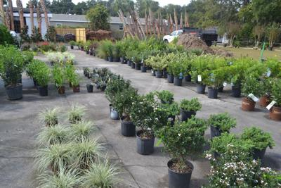 Discount Landscape Supply