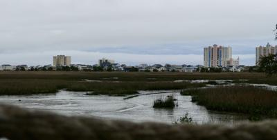 Cherry Grove marsh