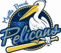 Pelicans offer 'bloody' fans free tickets to baseball game