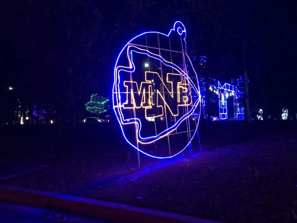 NMB Christmas light show 1