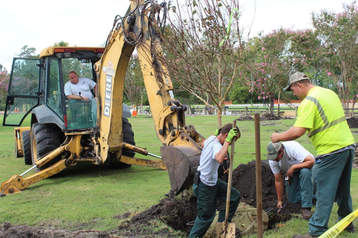 Riverfront Park tree planting