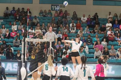 CCU volleyball rolling