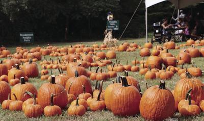 Harvest Home Weekend