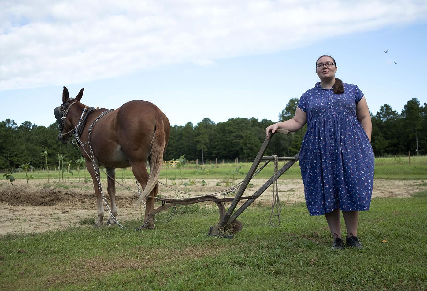 902 Minnie mule paul farm walter hill_JM05.JPG