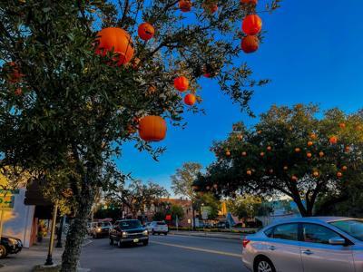 Fall Season City of Conway 1