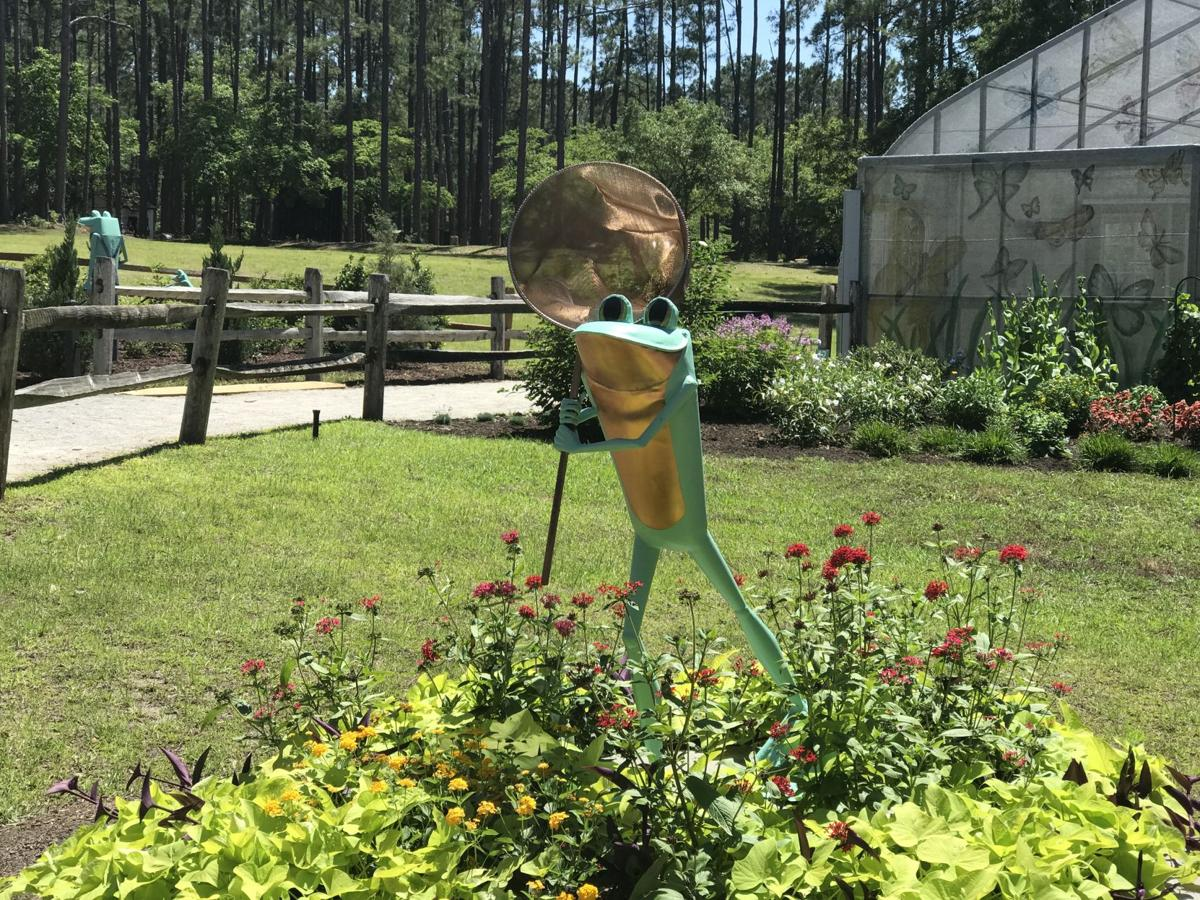 From butterfly house to boat rides, explore Brookgreen Gardens ...