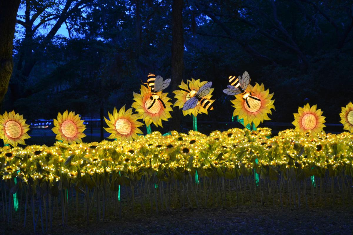 Summer Lights At Brookgreen Gardens Beauty By Day Magic By Night Visit