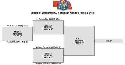 C2-7 Volleyball Subdistrict