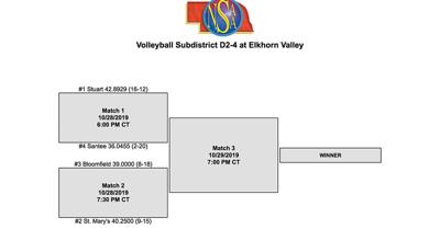 D2-4 Volleyball Subdistrict
