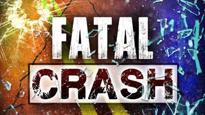 Fatal Crash takes the life of Semi Driver