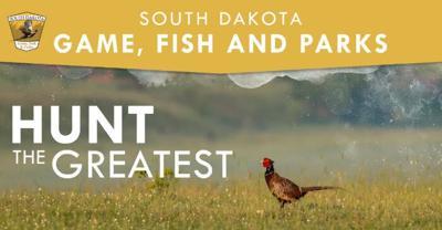 Hunt Pheasant