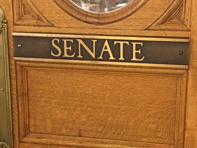 SD Senate 1.jpg