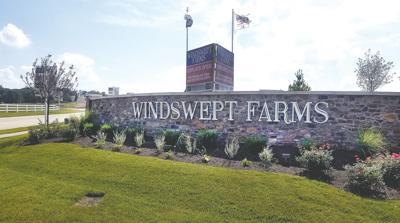 windswept farms web.jpg