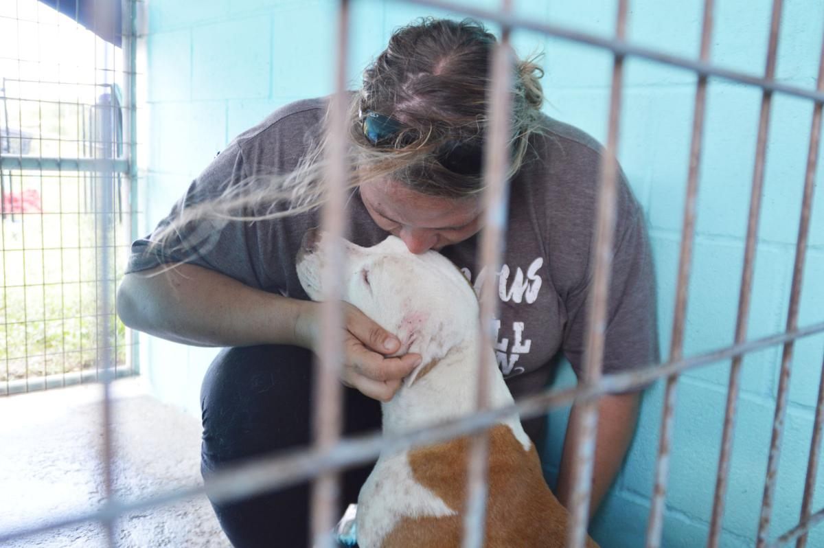 Even after a $25,000 Petco foundation grant win, Denney remains hard at work saving animals, especially with blistering summer heat on the horizon