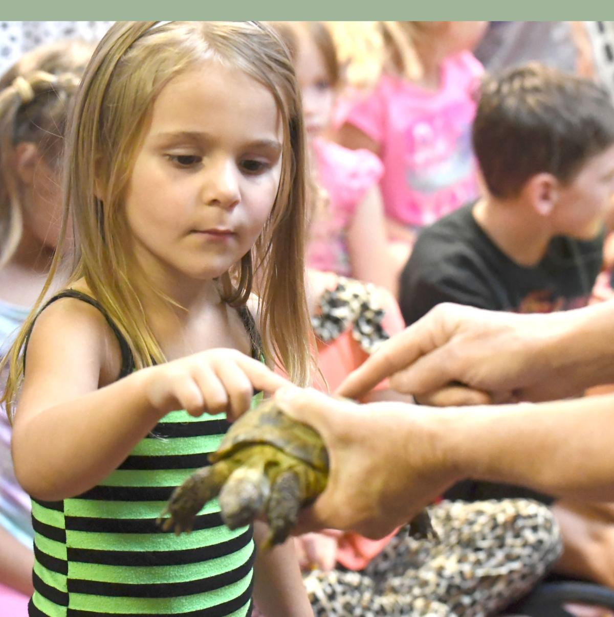 'Animals in Space' brought to Falls City Library