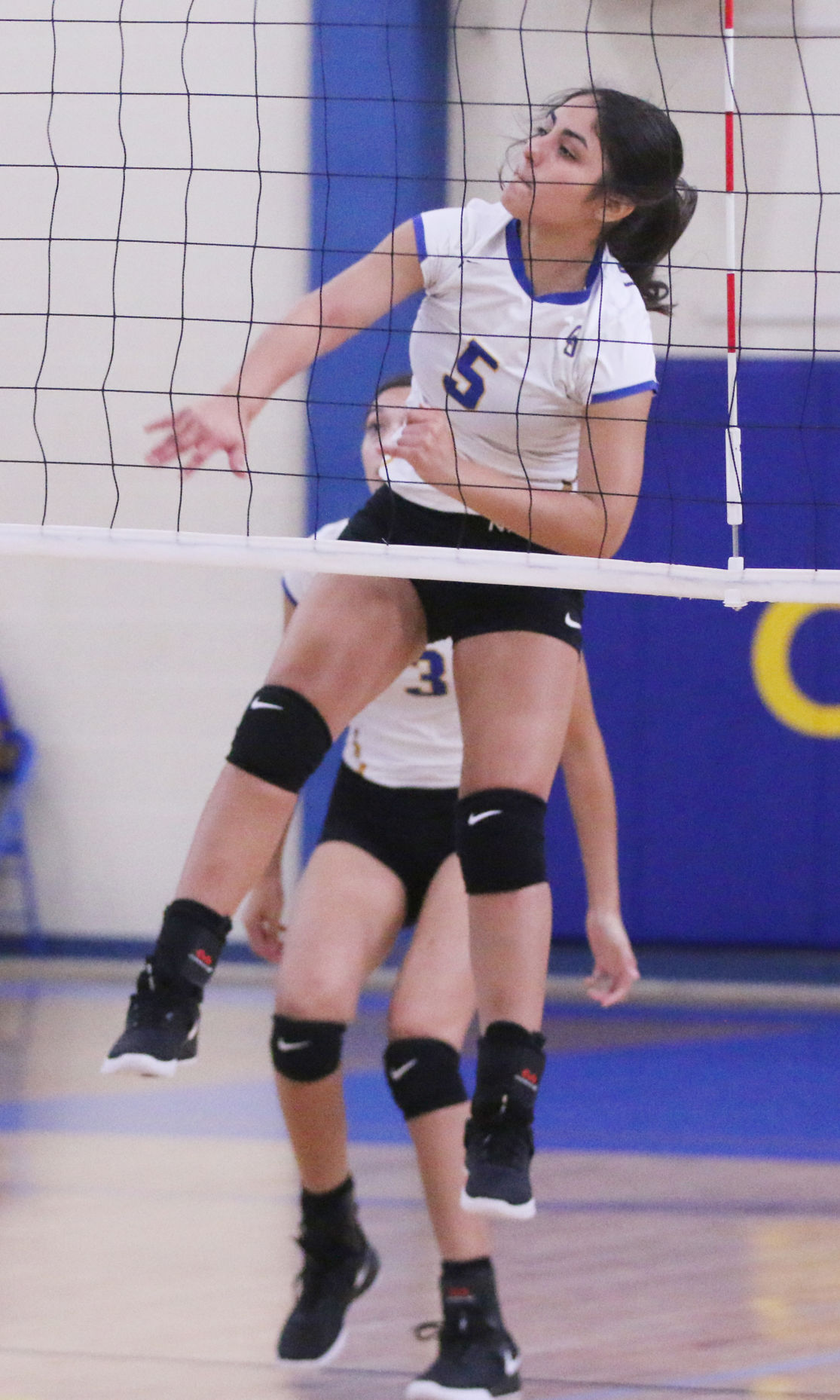 Lady Owls roll past Ben Bolt with big win