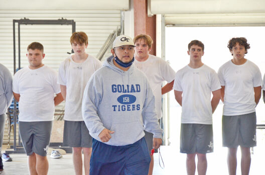 Tigers lift weights, each other