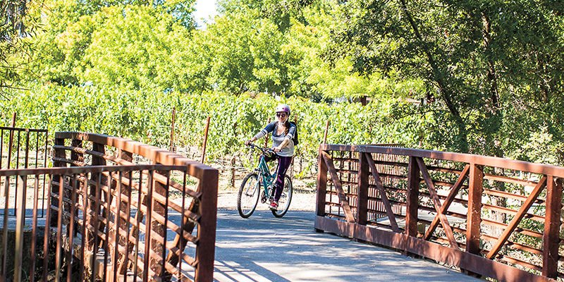 Guide to the Vine Trail