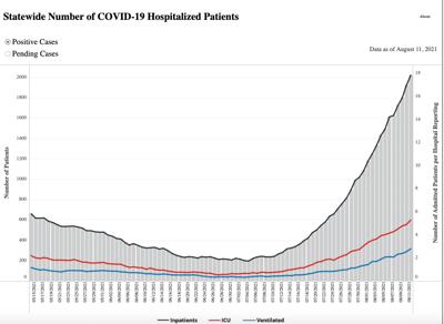 COVID Hospitalizations 8.12