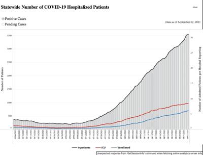 COVID hospitalizations 9/2/21