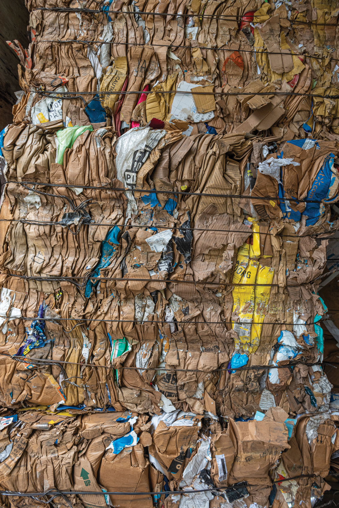 The Green Issue: So You Want to Recycle Responsibly