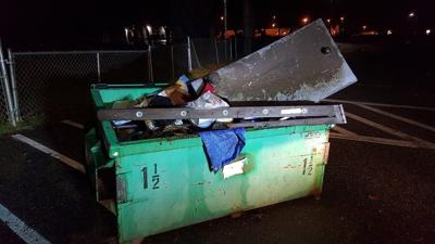 Dumping personal items in public park dumpsters is illegal