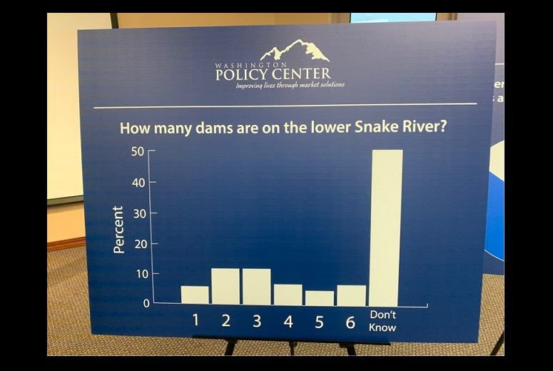 how many dams are there