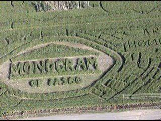 Get lost in a corn maze