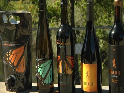 Palencia Wine: moving its roots to Kennewick's Wine Village