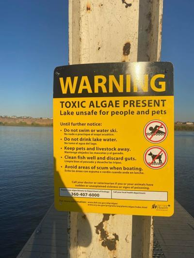 Toxic algae warning