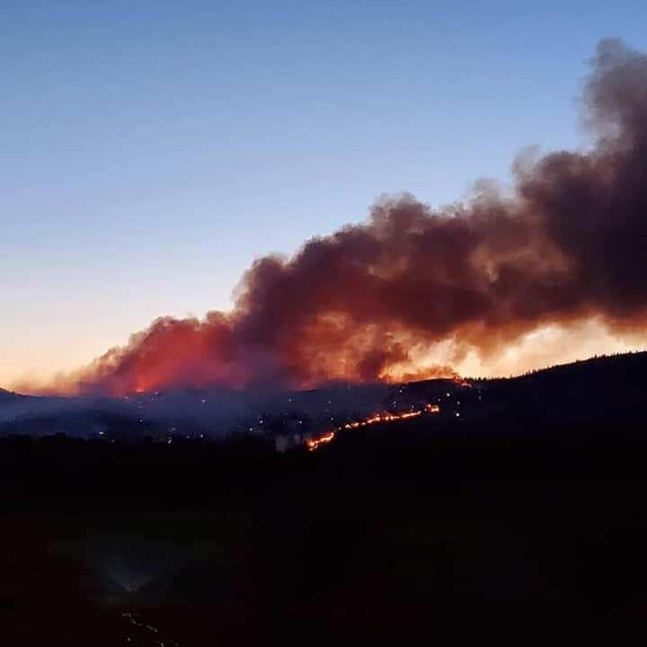 Cayuse Mt Fire