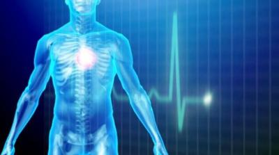 Body shape and heart attack risks