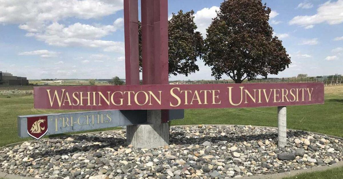 Free Wsu Tri Cities Jump Start Program To Get Students Prepped For Virtual Fall Semester Back To School Nbcrightnow Com