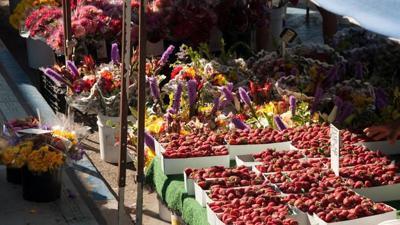 Farmer's market season kicks off with start of summer
