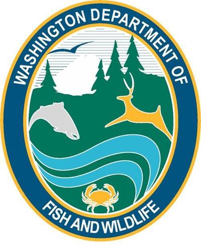 Drought Conditions Prompt Fishing Closures & Restrictions on Numerous Washington Rivers