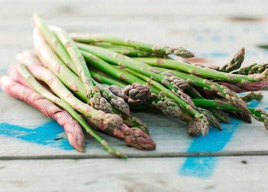 Middleton Six Sons Farms cancels annual asparagus festival