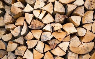 Umatilla National Forest Firewood Permits Available June 1st
