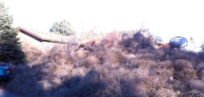 Pasco Home Swallowed by Tumbleweeds
