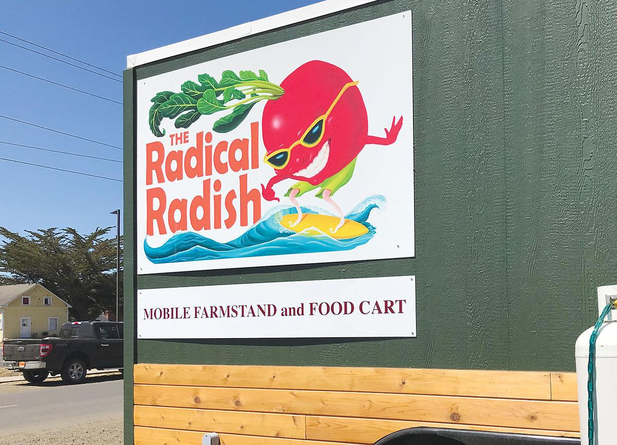 Business-Radical-radish3