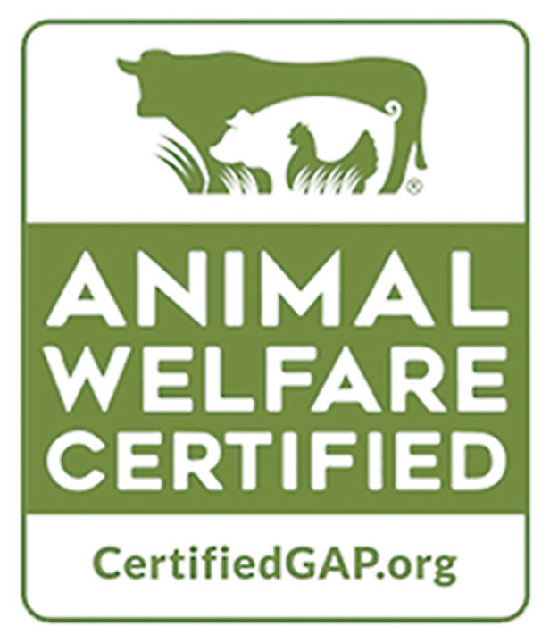 pet-improvement-food-animal-welfare