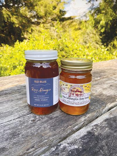 Pine-Needle-Honey