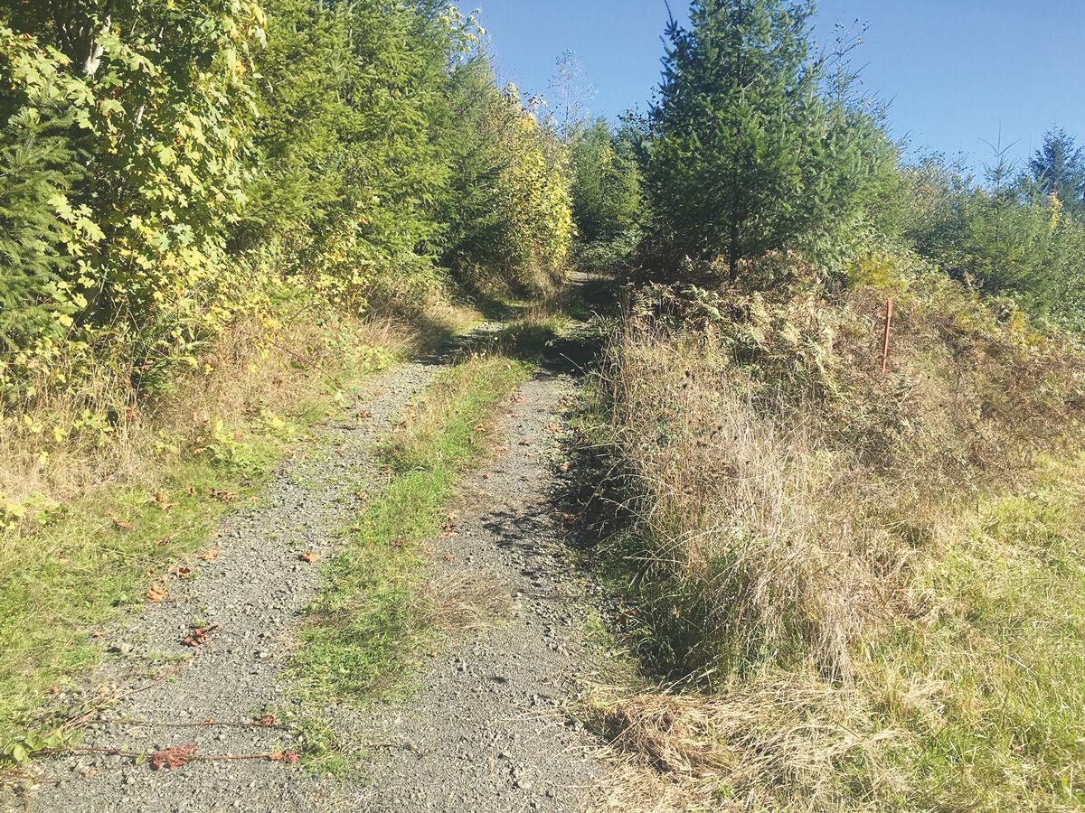 C2C-Trail-3