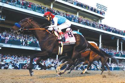 Pet-improvement-horse-racing