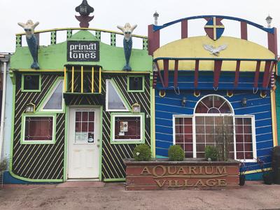 Primaltones: a venue like no other
