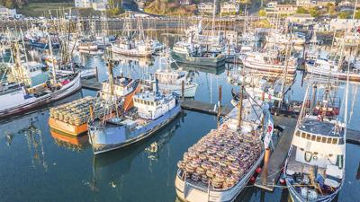Seafood Boats