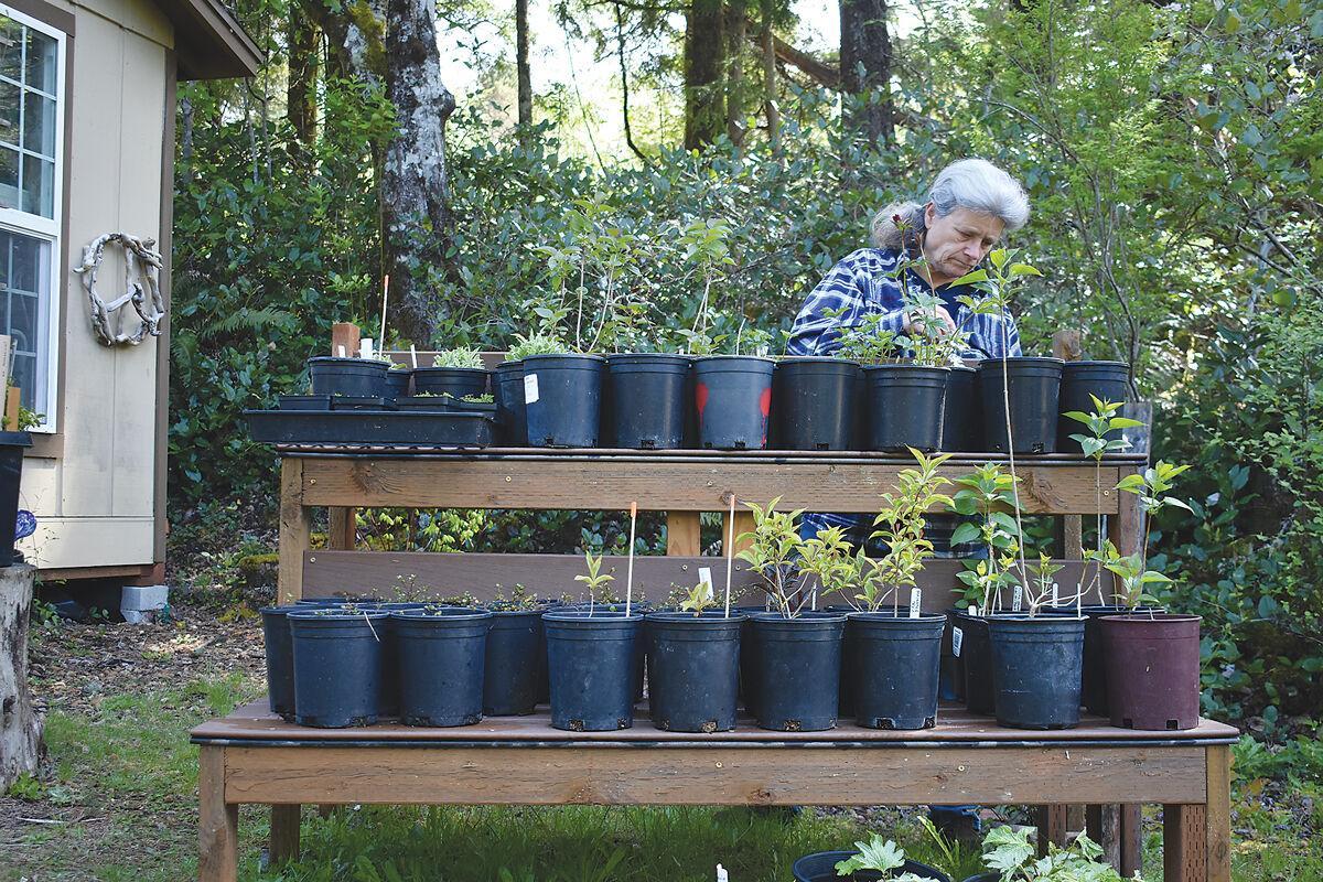 Master-gardener-plant-sale1