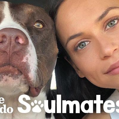 This Woman Couldn't Sleep — Until She Rescued a Pit Bull | The Dodo Soulmates