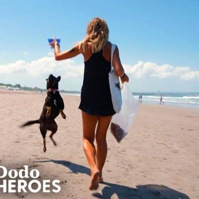 Woman Devotes Her Life To The Stray Dogs Of Bali | The Dodo Heroes