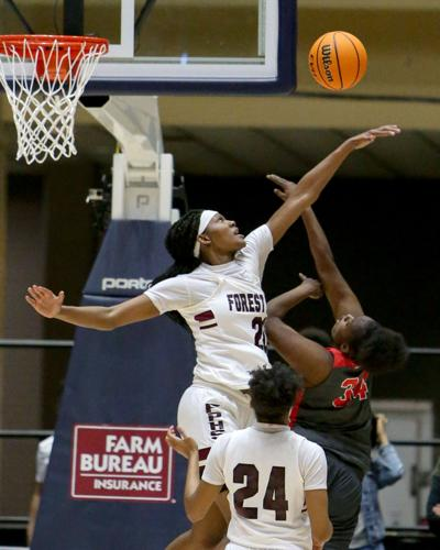 Forest Park's Lady Panthers captured the Class AAAAAA state title Saturday afternoon (5).JPG (copy)